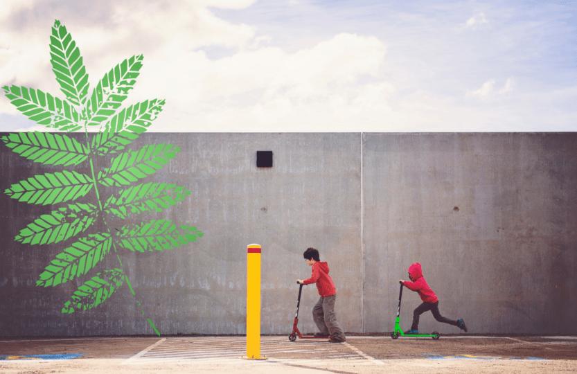 Ekologiczny transport